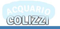 Acquario Colizzi - negozio online di prodotti per piscine